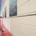 Blackfeet muro 1